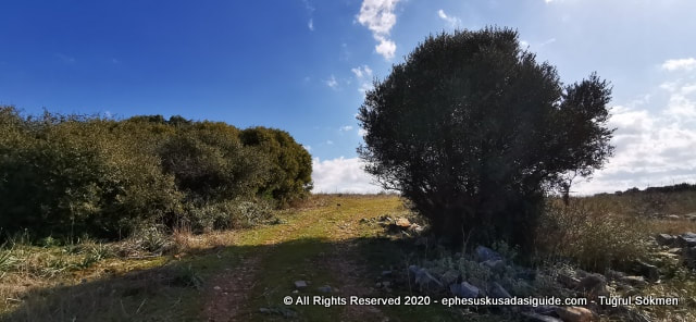 hike-on-the-hills-of-kusadasi
